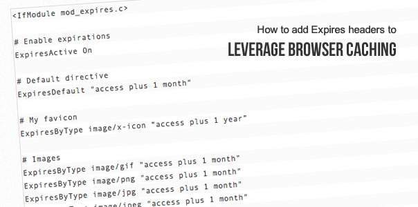 How to add expires headers to leverage browser cache